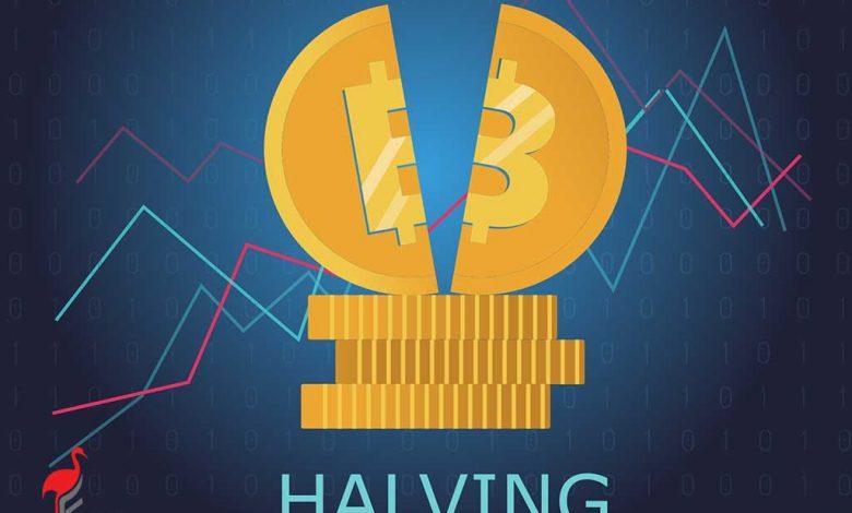 هاوینگ Halving