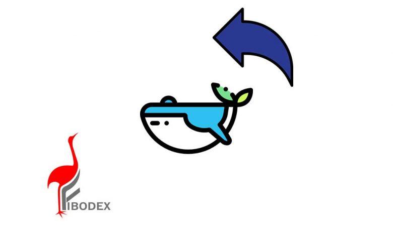 نهنگ های سرمایه گذار