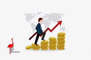 سرمایه گذاری افزایشی